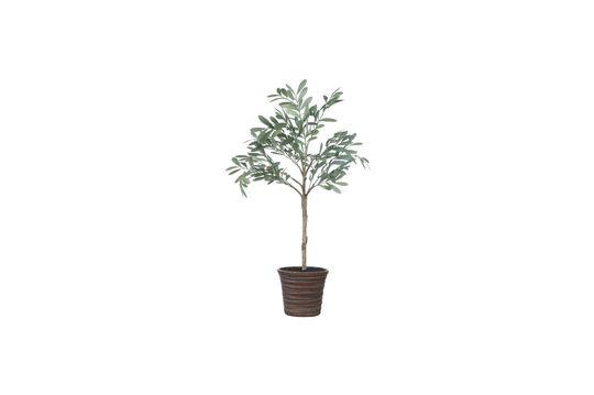 Kunstmatige olijfboom Biermes Productfoto